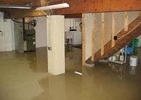 Elite Water Damage and Restoration inc.- Basement Water Removal