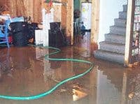 Water removal services - Elite Water Damage and Restoration inc.